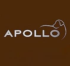 Apollo - אפולו
