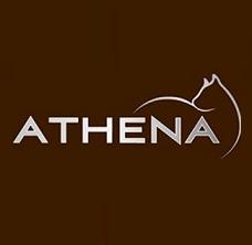 Athena - אתנה
