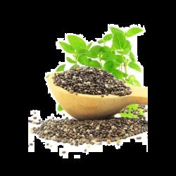 אומגה צ'יה - אומגה 3 צמחית